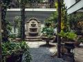 Grand_Ferdinand_Oasis_Garden_1