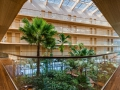 Atrium-with-bamboo-and-palm-trees