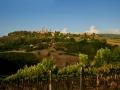 Landschaft-San-Gimignano-i-pini