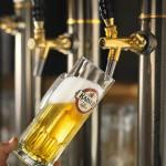 Die Welt des Bieres: Tradition trifft Innovation!