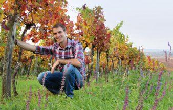 Veganer Wein – Weinbau Fürnkranz
