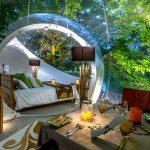 Bubble Lodge – Übernachten in freier Natur