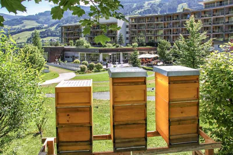 Bienen Kempinski Hotel