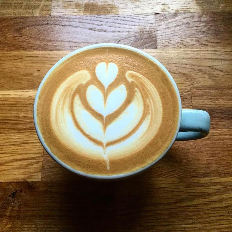 Kaffeschaum Tulpe