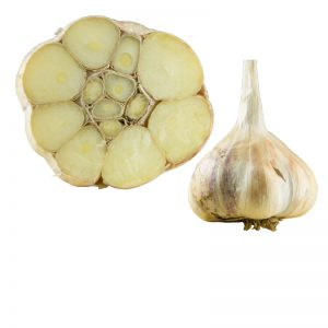 IncheliumRed_Knoblauch