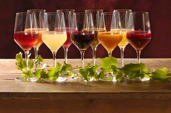 NÖ Weinkultur Preiß